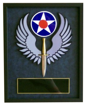 AFSOC Wings with Dagger